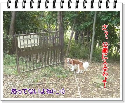 2011101105.jpg