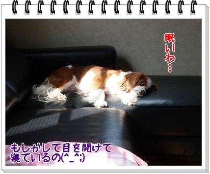 2011101301.jpg
