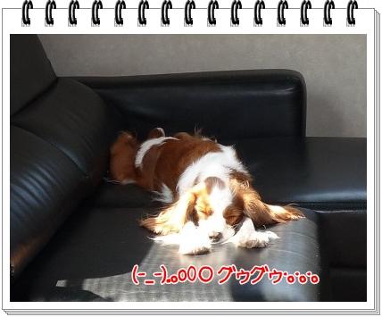 2011101303.jpg