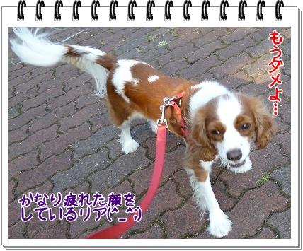 2011101306.jpg