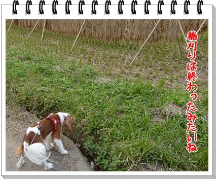 2011101403.jpg