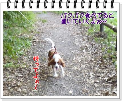 2011101406.jpg