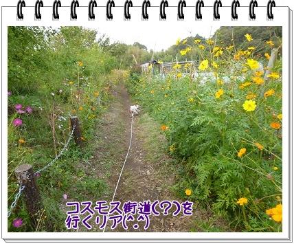 2011101408.jpg