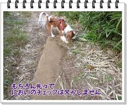 2011101409.jpg