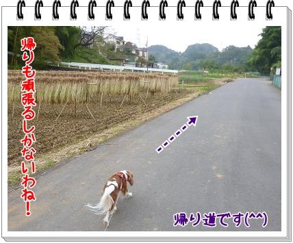 2011101413.jpg