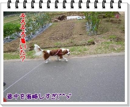 2011101507.jpg