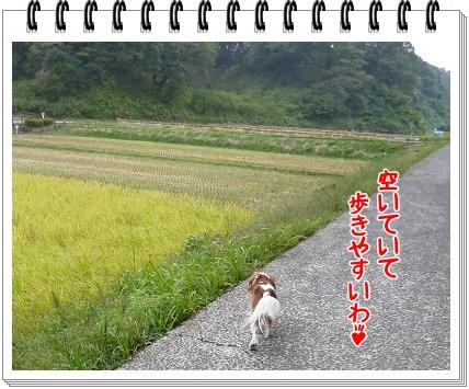 2011101509.jpg