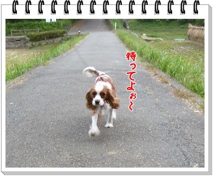 2011101510.jpg