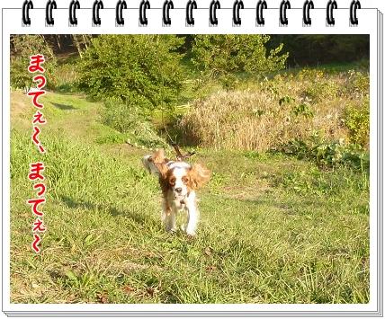 2011103011.jpg