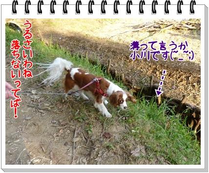 2011103013.jpg