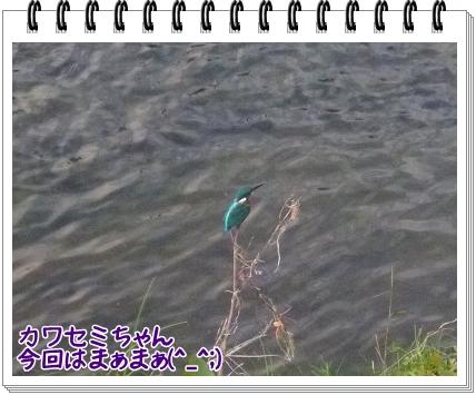 2011103016.jpg