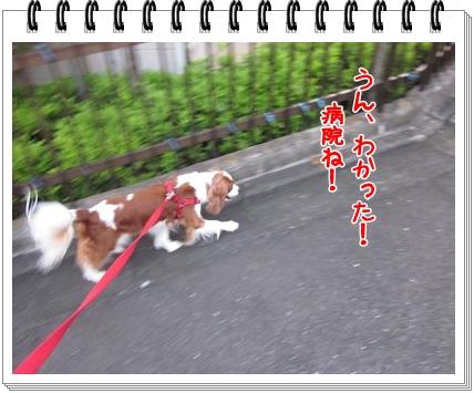 2011110301.jpg