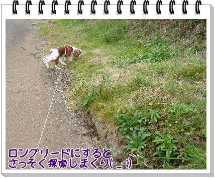 2011111303.jpg