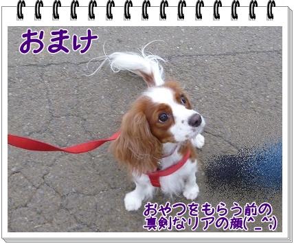 2011111312.jpg