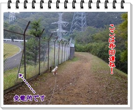 2011111405.jpg
