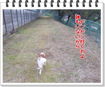 2011111407.jpg