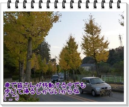 2011111934.jpg