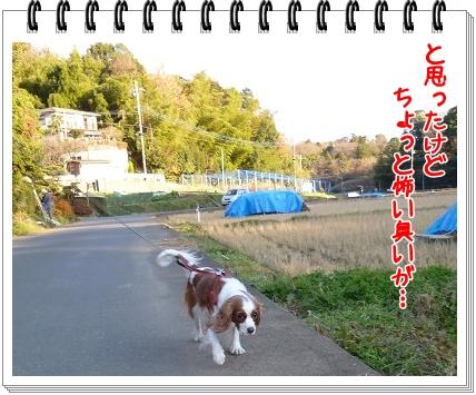 2011121805.jpg