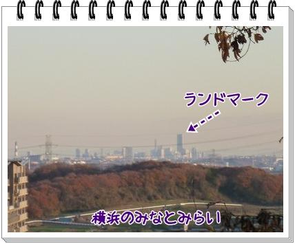 2011121816.jpg