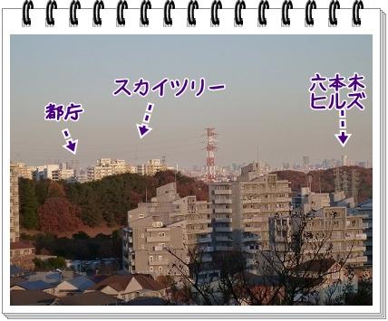 2011121817.jpg