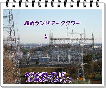 2011122614.jpg