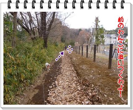 2012010205.jpg