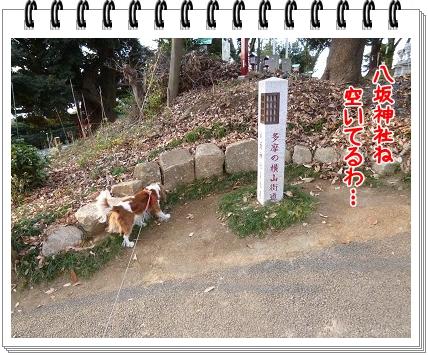2012010209.jpg