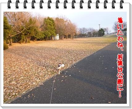 2012010211.jpg