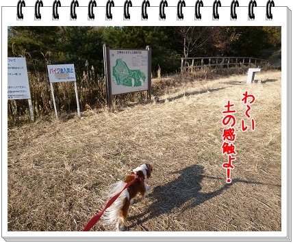 2012010906.jpg