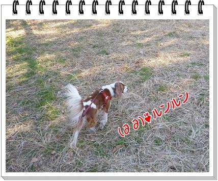 2012010907.jpg