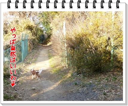 2012010910.jpg