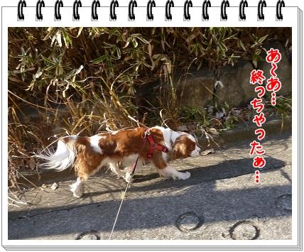 2012010911.jpg