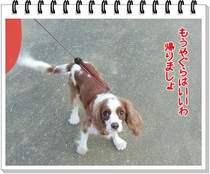 2012011010.jpg