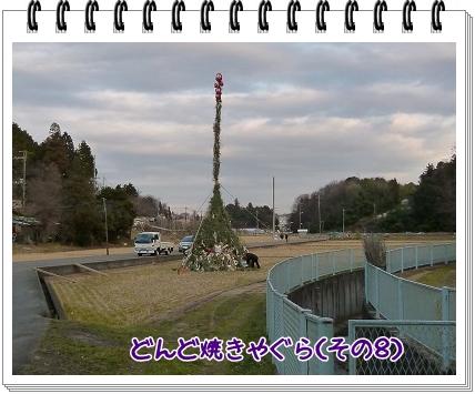 2012011510.jpg