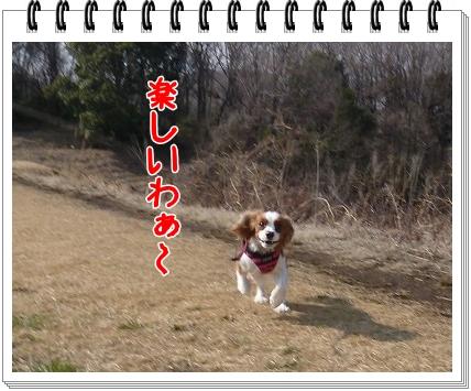 2012031204.jpg