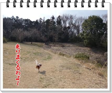 2012031205.jpg