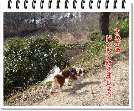 2012031206.jpg