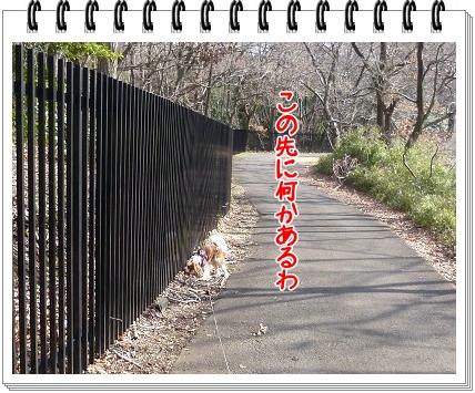 2012031207.jpg