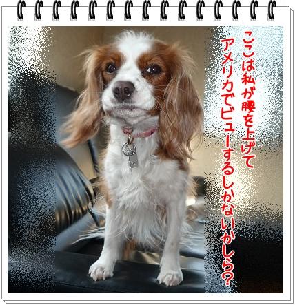 2012031401.jpg