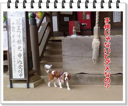 2012031706.jpg