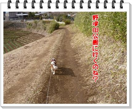 2012031707.jpg