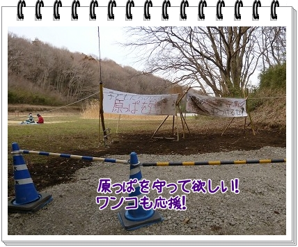 2012031709.jpg