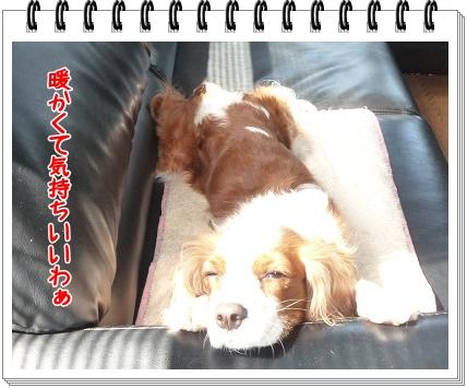 2012032002.jpg
