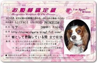 PRINCESS01.jpg