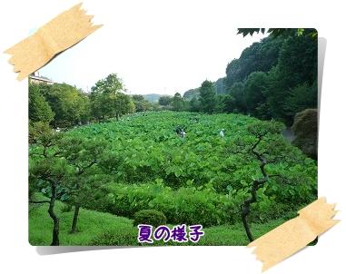 d20101017.jpg