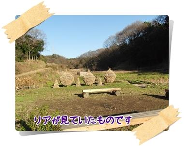 d20101226.jpg