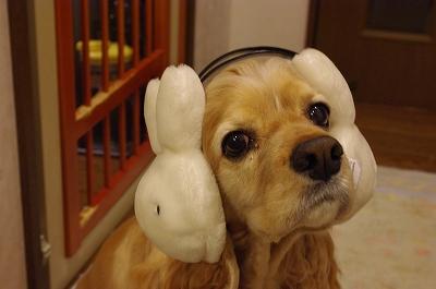s-耳あてアピィ