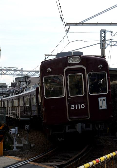 DSC_5601.jpg