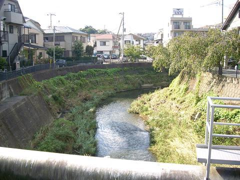 大岡川の与七橋B