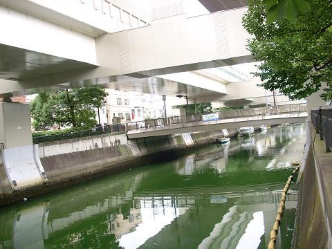 中村川の東橋A